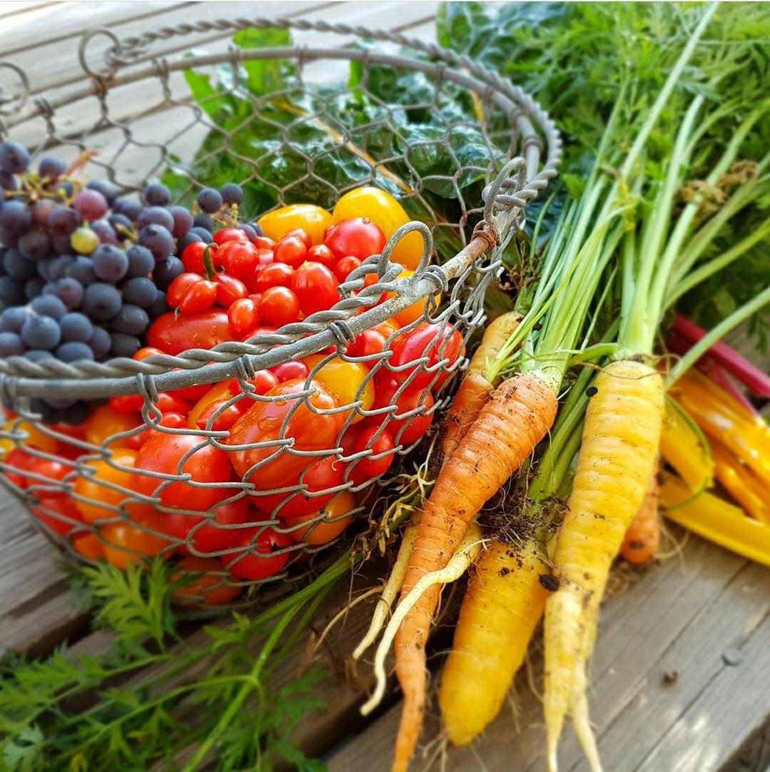 3 maj: Utveckla dig som odlare - haka på 3 kvällar till!